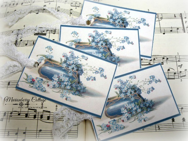 Gift Tags Vintage box of Forget me nots