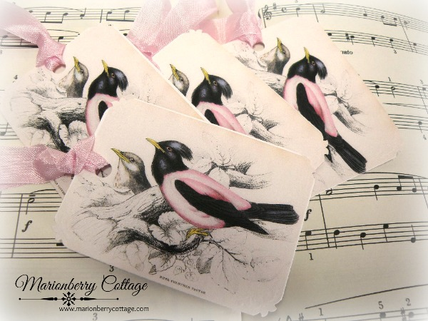 GIFT TAGS lovely rose pastor birds