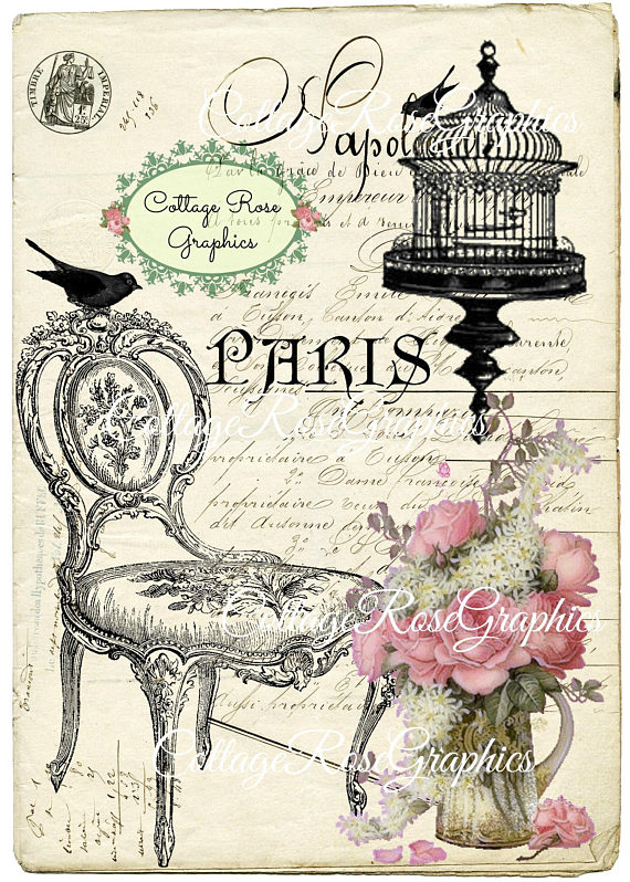 Paris bird on a chair art print